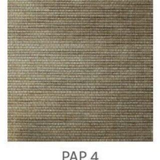 PAP-4