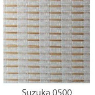 Suzuka-0500