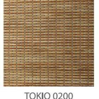 Tokio-0200